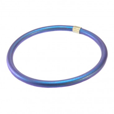 Giampouras 5070 ~ Anodized Colored Titanium Bracelet