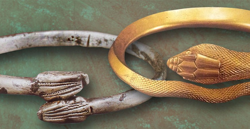 Snake-Serpent - History & Meaning